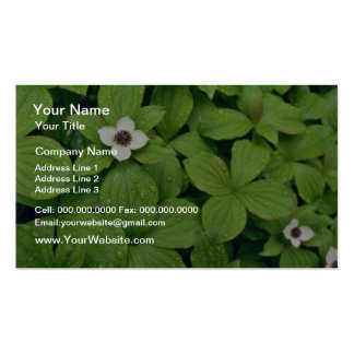 Wild Bunchberry flowers Business Card