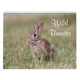 Wild Bunnies Calendar