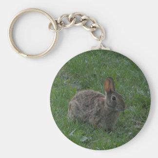 Wild Bunny Rabbit Keychain