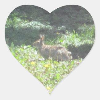Wild Bunny Stickers - Sheet of 20