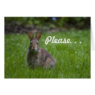Wild Bunny Valentine Card