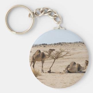 Wild Camels Keychain