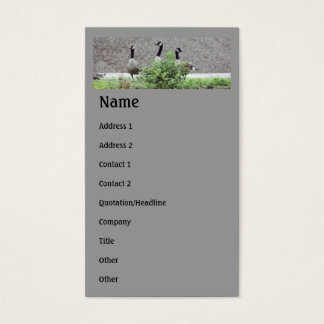 Wild Canada Geese Animal Business Card