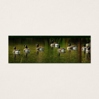 Wild Canada Geese Bookmark Mini Business Card
