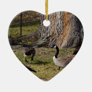 Wild Canada Geese Ceramic Ornament