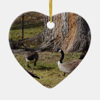 Wild Canada Geese Ceramic Ornament