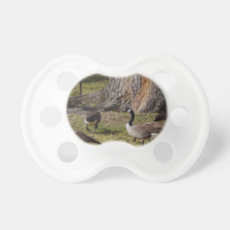 Wild Canada Geese Pacifier