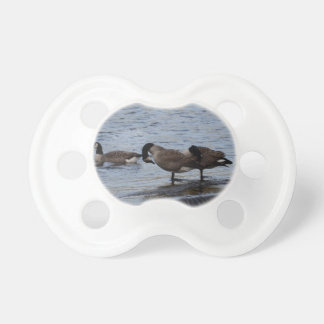 Wild Canada Geese Baby Pacifiers