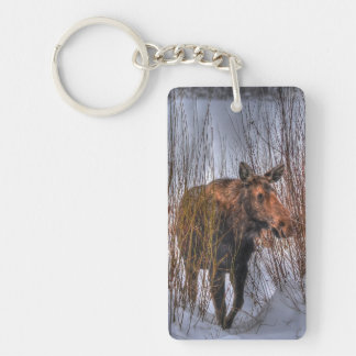 Wild Canadian Moose Cow in Winter Snow I Keychain
