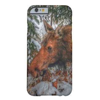 Wild Canadian Moose Grazing in Winter Forest Barely There iPhone 6 Case