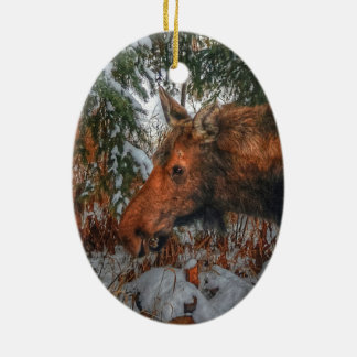 Wild Canadian Moose Grazing in Winter Forest Double-Sided Oval Ceramic Christmas Ornament