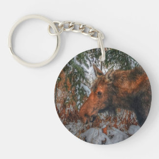 Wild Canadian Moose Grazing in Winter Forest III Single-Sided Round Acrylic Keychain