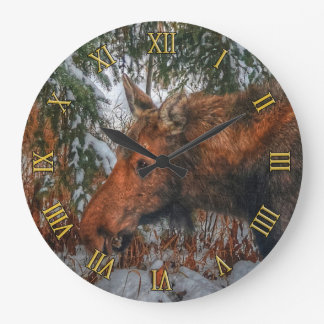 Wild Canadian Moose Grazing in Winter Forest Large Clock