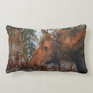Wild Canadian Moose Grazing in Winter Forest Pillow