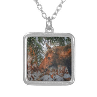 Wild Canadian Moose Grazing in Winter Forest Silver Plated Necklace