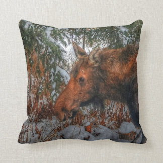 Wild Canadian Moose Grazing in Winter Forest Throw Pillow