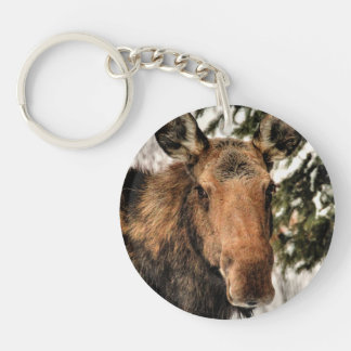 Wild Canadian Moose in Winter Forest Keychain