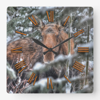 Wild Canadian Moose in Winter Forest Square Wall Clock