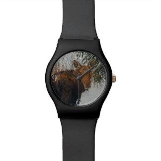 Wild Canadian Moose in Winter Forest Wristwatch