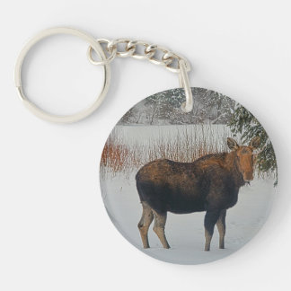 Wild Canadian Moose in Winter Snow IV Keychain