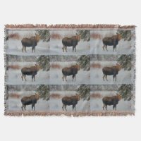 Wild Canadian Moose in Winter Snow IV Throw