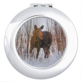 Wild Canadian Moose in Winter Snow VI Mirror For Makeup
