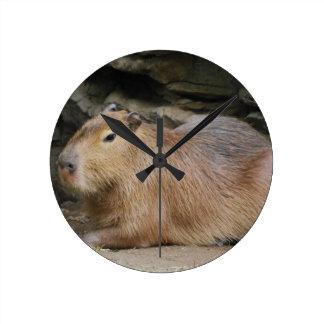 Wild Capybara Clock