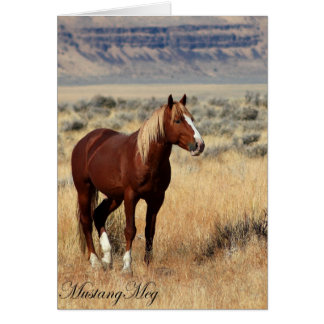 Wild Card~ Red Vogue, Band Stallion of Steens Greeting Card