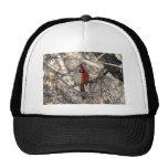 Wild Cardinal Bird Half Male, Half Female Hat