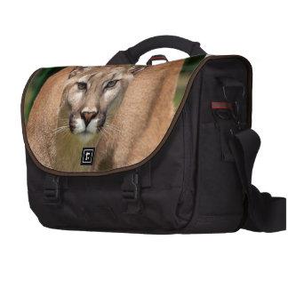 Wild Cat Animals Purr Cougar Commuter Bag