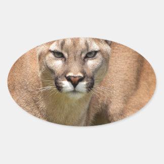Wild Cat, Animals Purr, Cougar Oval Sticker