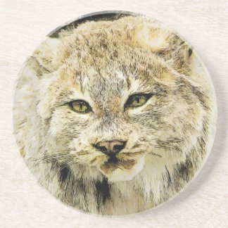 Wild Cat Closeup Drink Coaster