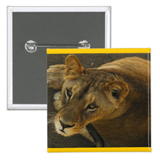 WILD CAT LION MOTHER PINBACK BUTTON