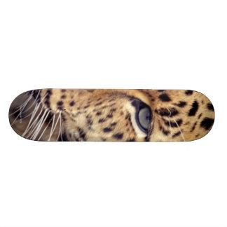 Wild Cat Skateboard