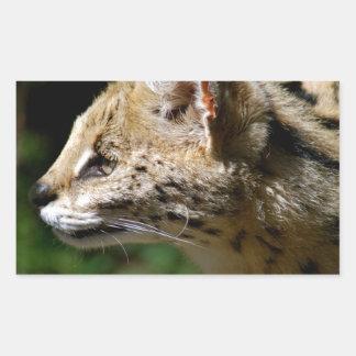 Wild cat rectangle sticker