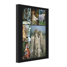 Wild cats collage Wrapped Canvas Stretched Canvas Prints