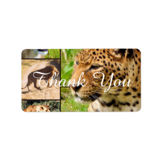 wild cats personalized address label