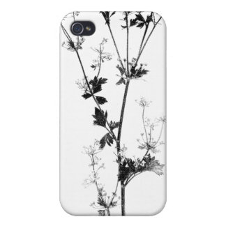 Wild Celery (Black on White) Case For iPhone 4