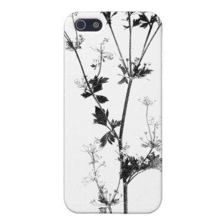 Wild Celery (Black on White) iPhone 5 Cases