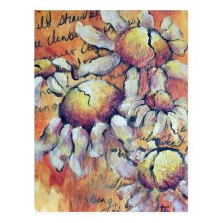 Wild Chamomile Postcard