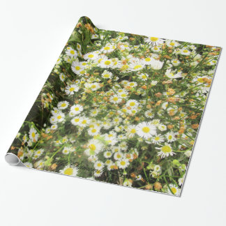 Wild Chamomile - Prairie Mile - giftwrap Wrapping Paper
