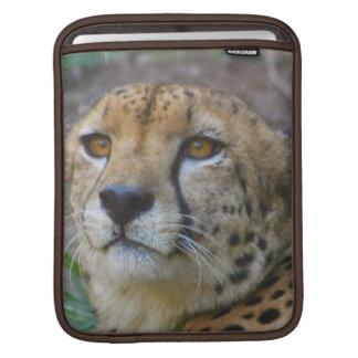 Wild Cheetah iPad Sleeve