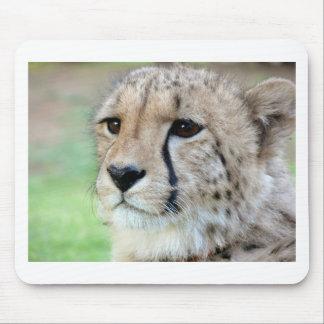 Wild Cheetah Mouse Pad