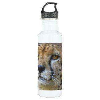 Wild Cheetah 24oz Water Bottle