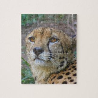 Wild Cheetah Puzzle