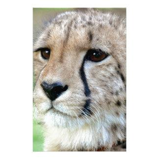 Wild Cheetah Custom Stationery