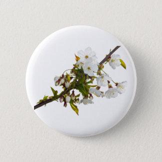 Wild Cherry Blossom Button