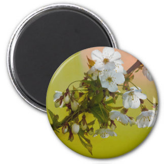 Wild Cherry Blossom Magnet