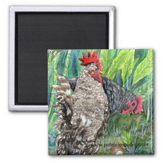 Wild Chicken Magnet