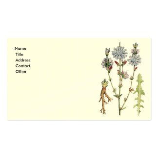 Wild Chicory Business Card Templates